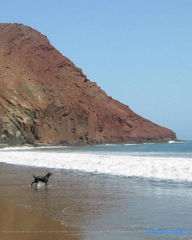Montaña Roja Playa la Tejita Taxi Aeropuerto Tenerife Sur TFS Reina Sofia